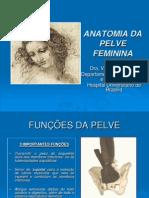 Aula - Anatomia Da Pelve Feminina