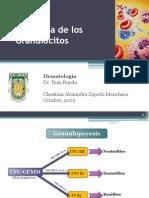 21189848 Fisiologia de Los Granulocitos