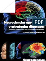 Neurocienciaeinvestigacion
