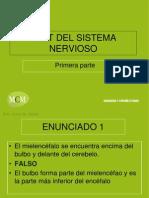 enunciados-sistema-nervioso-1