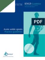 54458628-AnkleSprain-PCG-27032009 (1)