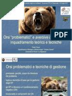 Anche gli orsi piangono 1