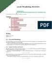Lecture 6 - Greyscale Morphology, Recursive Morphology