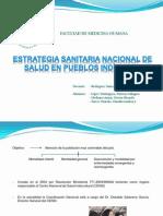 Salud en Pueblos Indígenas (Diapositivas)