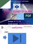 Salmon p.point Auto Saved]