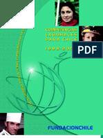 Competencias Laborales Para Chile 1999 2004 Fundacion Chile