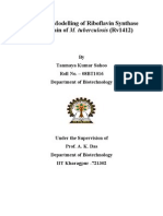 BTP Report on Homology Modeling of Riboflavin Synthase
