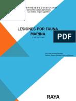 Lesiones Por Fauna Marina