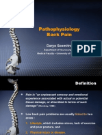 Back Pain Pathophysiology