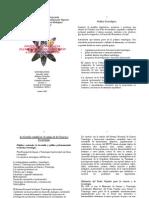 Políticas Tecnológicas, Planes Nacionales en relación de CT