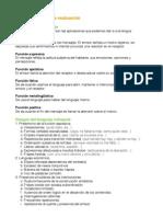 Castellano - Primera evaluación