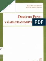 Derecho Penal y Garantias Individuales - Bruera Hugo a Bruera Matilde m