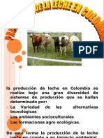 producciondelecheencolombia-100710091136-phpapp02