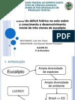 Seminario_Efeito do deficit hídrico no estabelecimento de tres clones de Eucaliptos