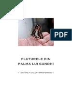 Fluturele Din Palma Lui Gandhi v2