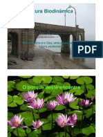 agricultura-biodinamica1