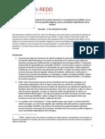 Direct Rices Para El Involucramiento de Las Partes Relevantes en La Preparacion Para REDD Con Un Enfoke en La Participacion de Los Pueblos Indigenas