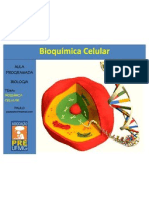 (2) Aula de Bioquímica Celular