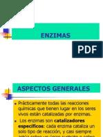 Enzimas_y_cinetica_enzimática