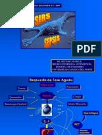 1.2. Sirs Sepsis Shock. 2009