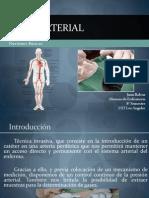 Línea Arterial Juan Balvoa