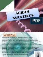 ÁCIDOS+NU..