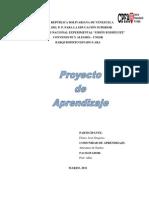 Proyecto de Aprendizaje - Ensayo