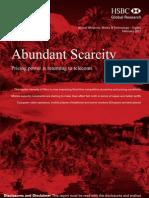 HSBC - Abundant Scarcity
