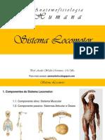 I Curso de Anatomofisiologia Humana - Sistema Locomtor