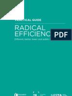 Radical Efficiency Practical Guide
