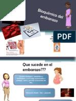Bioquímica del embarazo