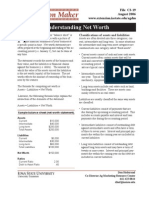 Cash Flow (Net Worth)