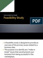 1 Feasibility Study