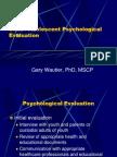 Child Adolescent Psychological Evaluation