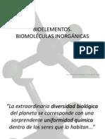 Bioelmentos (tipos, clasificación...)