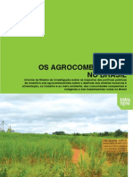 Os Agrocombustíveis no Brasil