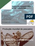 Piscicultura - Sistema Cultivo Tanques Redes