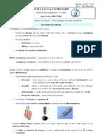 Resumo_F5-_Sistema_de_Forcas
