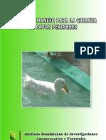 Manual Pato Pekin Es
