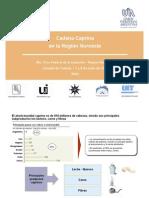 UIA_Cadena_Caprinos