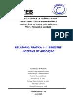 RP1_LABIII_Isoterma_de_Adsor--o