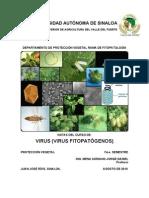 manualdevirusvirusfitopatgenos-100823110237-phpapp02
