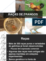 V_-_RAÇAS