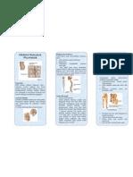 Leaflet Hernia Nukleus Pulposus