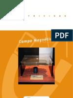 campo-magnetico-cuestionario