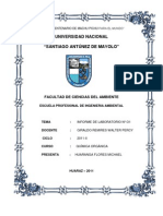 Informe de Quimica Organica(1)