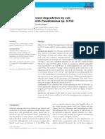 Enhanced of Phenol Degradation by Soil Bioaugmentacion With Pseudomonas Sp JS150