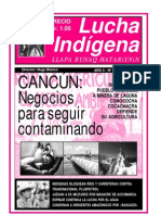 Lucha-Indigena-53