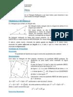 Triangulo Retangulo _002