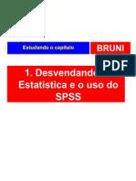 spss01desvendando-091010144909-phpapp02